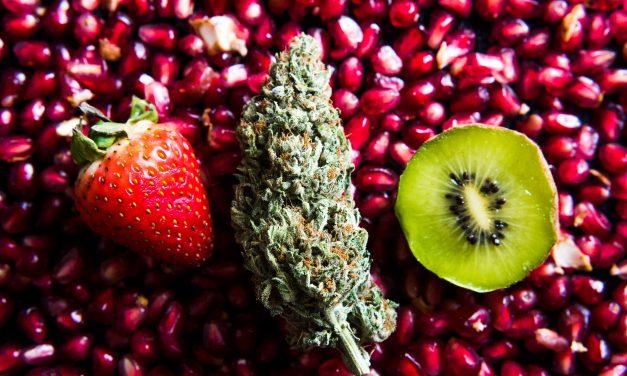 Green & Grub: A Pairing Guide