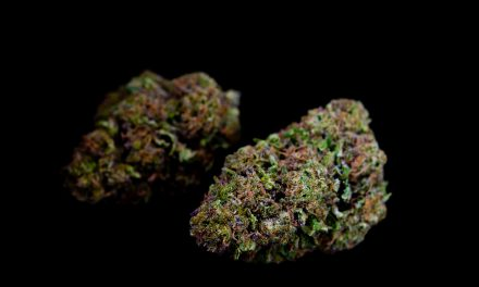 February's Strain of the Month: Grape Ape