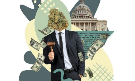 Cannabis Consultants: The Marijuana Rules Advisory Committee